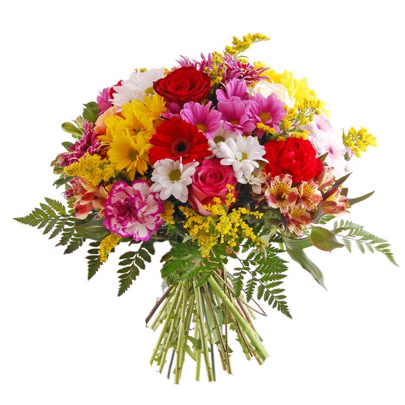 Kwiaty do biura Kwiaty