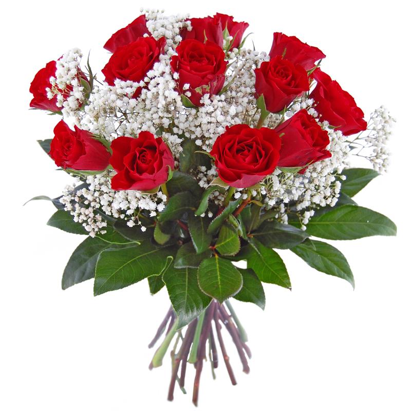 Piękne róże Kwiaty