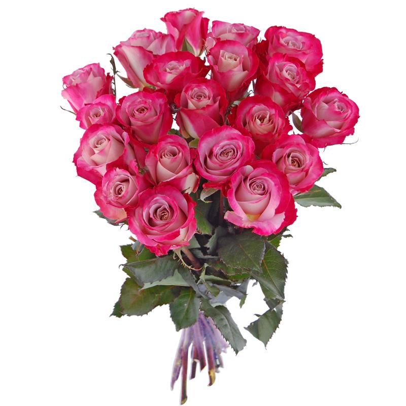 Roze Urodzinowe Bukiet Z 20 Roz Kwiaty Na Urodziny Dla Dziewczyny