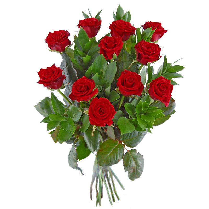 11 róż – Krzyk piękna Kwiaty