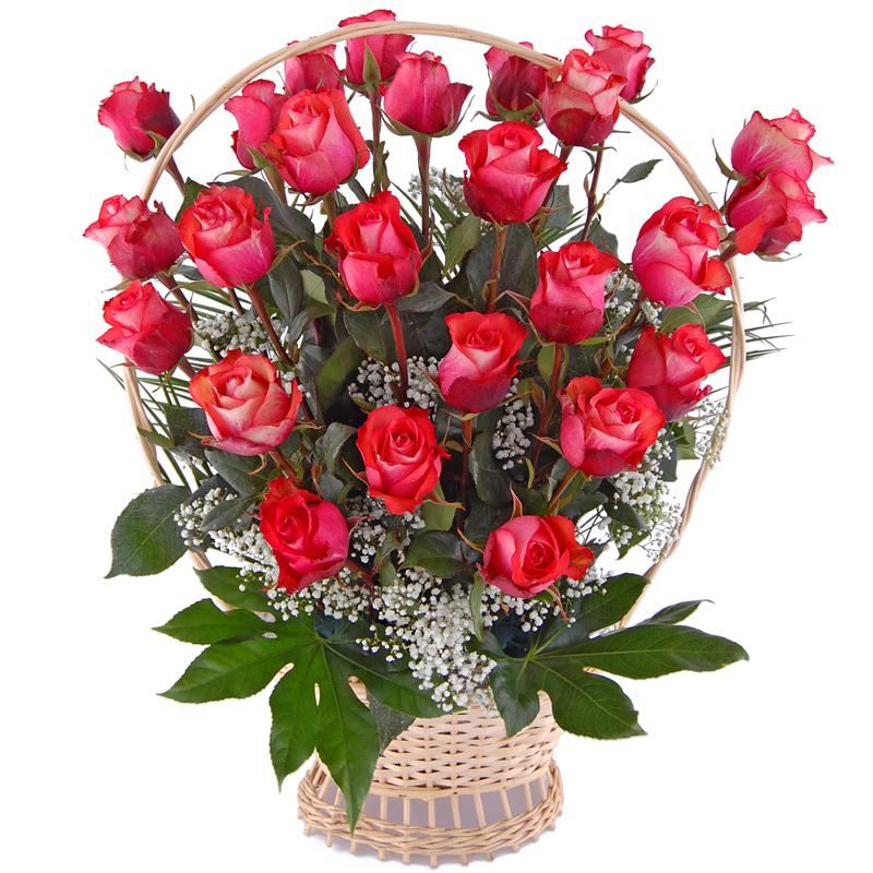 Róże w koszu Kwiaty