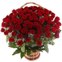 100 róż w koszu